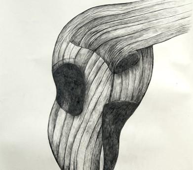 Ballinglen Drawing # 4