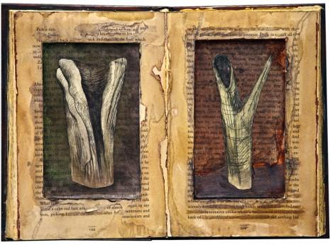 Zea Morvitz—Natural History 2